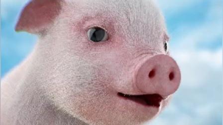 买刀片是假,爱吃猪头肉是真