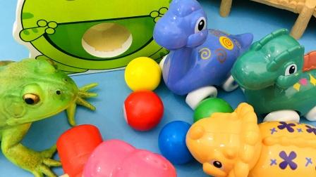 有趣的青蛙玩具 一起来玩吧