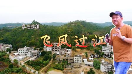 带你去看广东高州关氏清代古墓飞凤过江