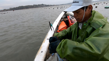 海蛎区成鱼群宝地,阿雄夫妻前来抓到爽,带着满满的鱼货赶紧回家
