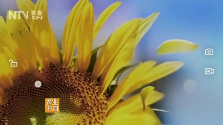 CCTV7我爱阳光宣传片