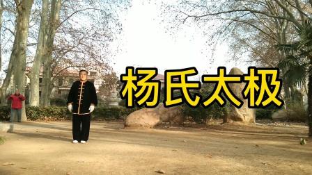 杨氏太极拳48式徐州刘来友