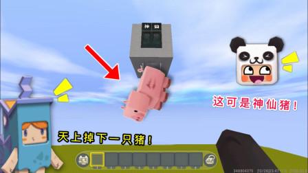 迷你世界:一只猪从天而降,不小心砸到大表哥,没想到它还是神仙