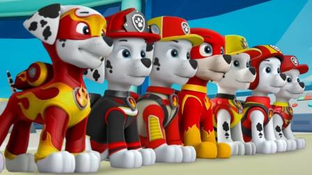 汪汪队玩具故事:太有趣了!一起来组装狗狗们的瞭望台吧!