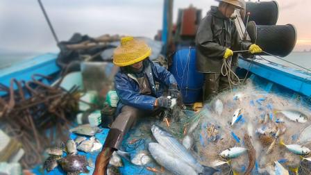 沉海里十几小时的渔网,效果出奇的好,阿彬一家乐坏了又发财了