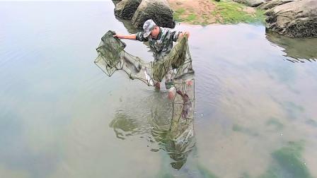 大潮后废弃地笼被浪拍上岸,里面值钱货没人注意,阿明这漏捡大了