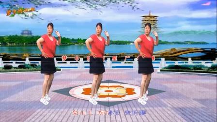 梦中的流星广场舞《梨山痴情花》舞蹈: 凤梅