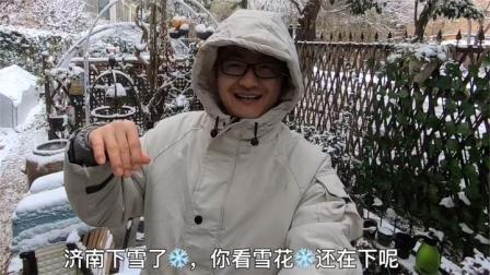 济南下雪啦!快来小院赏雪吧