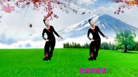 樊银品作词原创广场舞曲《九寨雪》樊银品寇勇词曲,吴飞编曲,雨健演唱,糖豆名师团紫云燕编舞并演示。
