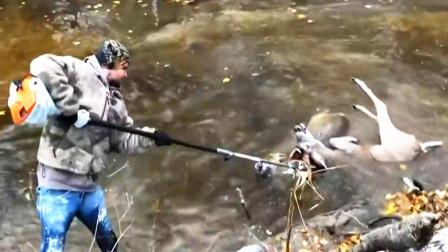 一只鹿在水里疯狂挣扎,当人们上前看清后,立马报警!