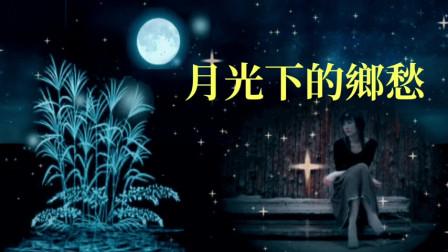 月光下的乡愁 - 云菲菲
