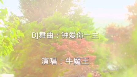 DJ舞曲(钟爱你一生)演唱牛魔王