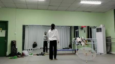 古典舞青蛇视频分解动作七,阜阳艺路舞蹈提供