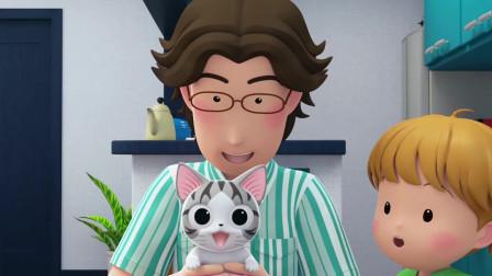 甜甜私房猫:小奇,你怎么了!