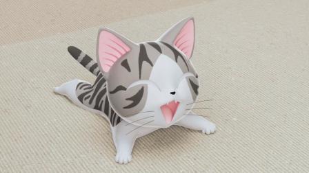 《甜甜私房猫》小奇,你开心吗