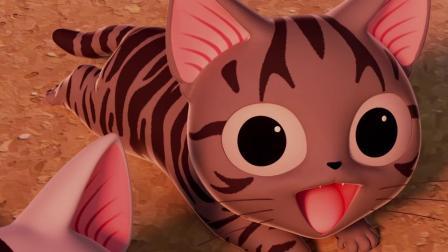 甜甜私房猫:猫咪在玩什么呢