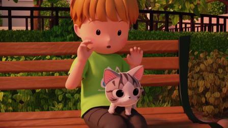 甜甜私房猫:小猫咪,你好好玩哦!