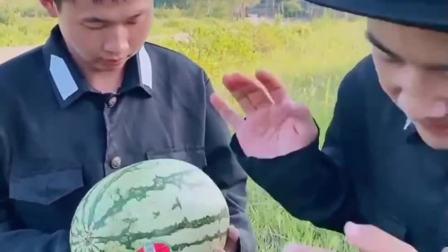 趣味生活:为什么我的西瓜这么小