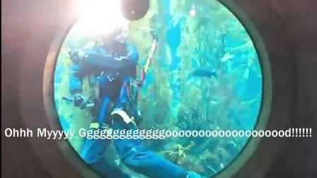 海洋生物鬼畜表情包
