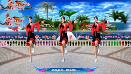 梦中的流星广场舞《朋友遍天下知心有几人》舞蹈:凤梅