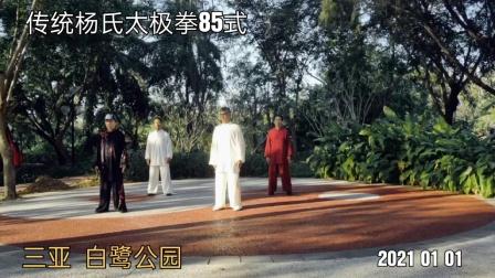 传统杨氏太极拳85式 三亚 2021 01 01