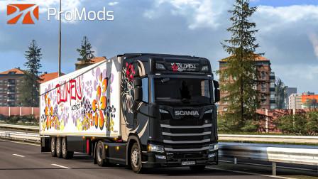 欧洲卡车模拟2 #377:于傍晚将一车鲜花送至奥地利格拉茨   Euro Truck Simulator 2