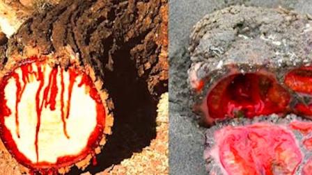 """大树被砍,为何会不断往外喷出""""血水""""?难道真成精了?"""