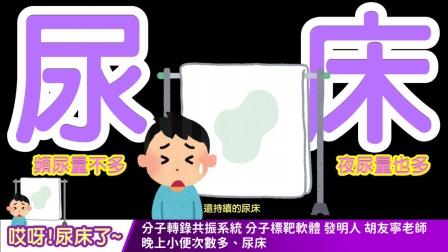 【中文字幕】wellness 尿床  晚上小便次數多、尿床、頻尿量不多、夜尿量也多