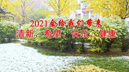入冬以来的第一场雪(2020年11月 21日)