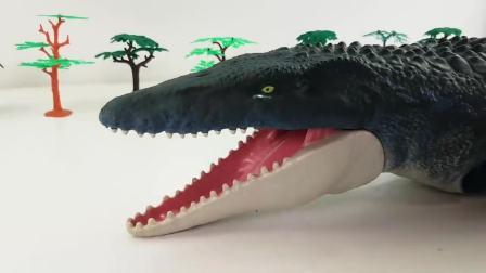 儿童亲子互动,霸王龙大鲨鱼肚子了到处找食物,快来看看吧
