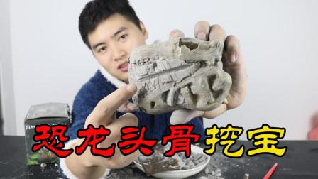 网购恐龙头骨化石挖宝盲盒,挖出了霸王龙头骨化石!是真的吗?