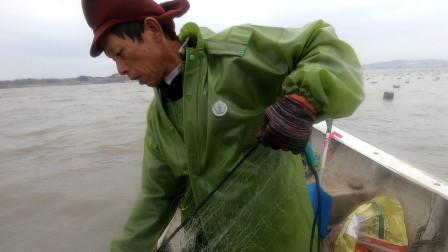 阿雄出海人品爆发,捅到鲈鱼窝了一条接一条,满满一筐全部都是货
