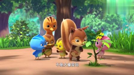 萌鸡小队:松鼠找到橡果,但却不能吃,橡果已经发芽了