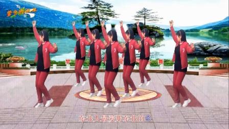梦中的流星广场舞《东北的冬东北的情》舞蹈: 凤梅