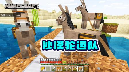 我的世界1.16版联机23:牵上4只毛驴,把以前的物资全部搬过来!