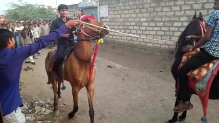 在印度骑马的都是人才!