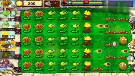 植物大战僵尸:豌豆射手配合火炬树桩,暴击铁桶僵尸!