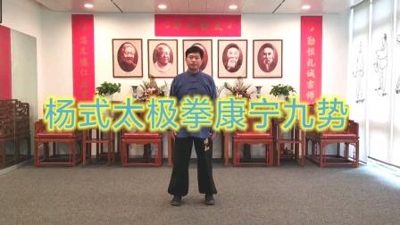 曾龙老师演练杨式太极拳康宁九势
