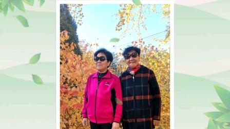 电视版《姐妹赏叶曙光园之三》(20201109)