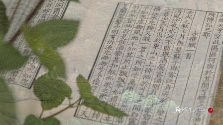 苏轼生活美学三讲· 江山风月