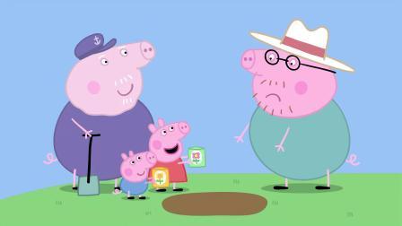 猪爸爸个头好大,就像稻草人一样,吓走了小鸟们!