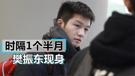 向马龙看齐!樊振东缺席乒超联赛后曝光新动态,刘国梁真没看错他