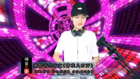 重低音全中文《情花几时开》重鼓嗨串精品CD大碟!