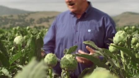 像花一样的蔬菜,被誉为蔬菜之皇!