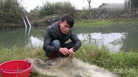 农村小明:农村小伙河道收渔网,大喊有大货,最后可惜了!