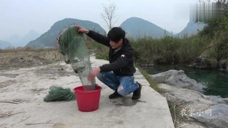 农村小明:农村小伙清澈小泉放地笼,收获几条本地土鱼,看把小伙乐的