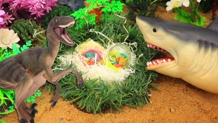 鲨鱼先生找来很多惊喜蛋