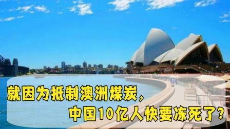 澳媒主持人信心满满:就因为抵制澳洲煤炭,中国10亿人快要冻死了