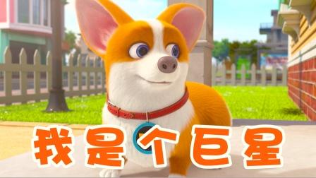 飞狗MOCO:萌宠变巨星,搞笑日常欢乐多!