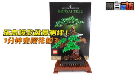 乐高LEGO★植物10281乐高盆景